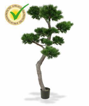 Umělá bonsaj Borovice 200 cm