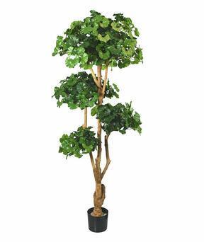 Umělá bonsaj Ginko 170 cm