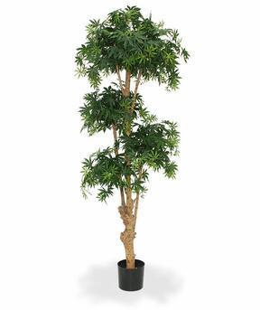 Umělá bonsaj Javor 170 cm