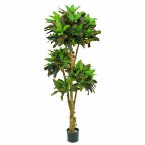 Umělá bonsaj Kroton 175 cm