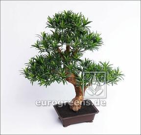 Umělá bonsaj Nohoplod 80 cm