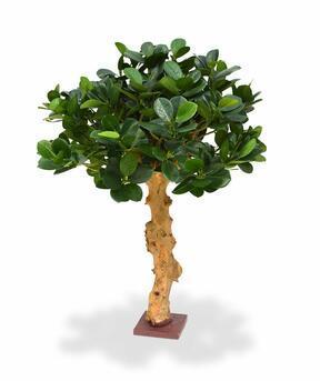 Umělá bonsaj Panda 60 cm