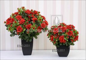 Umělá kytice Belgická Azalka červená 25 cm