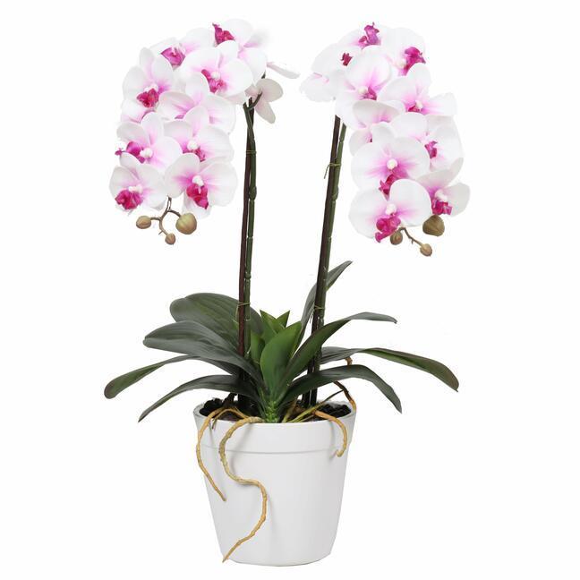 Umělá Orchidea 43 cm