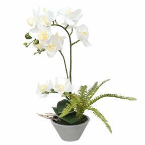 Umělá Orchidea bílá s kapradin 43 cm
