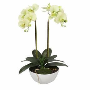 Umělá orchidej světlozelená 50 cm