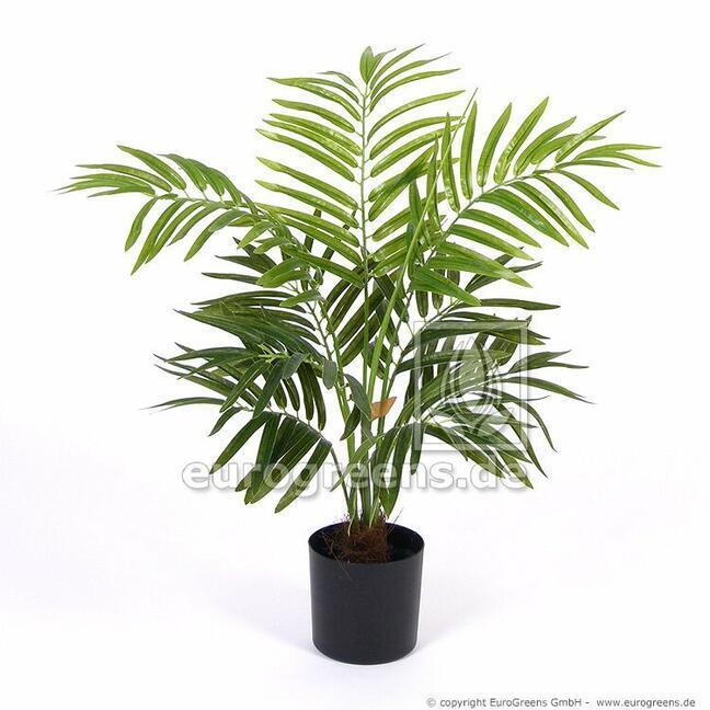 Umělá palma Areca 60 cm