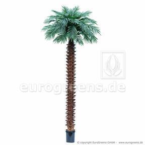 Umělá palma Butia capitata 400 cm