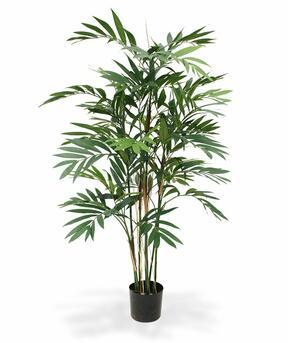 Umělá palma Chamédorea úhledná 150 cm
