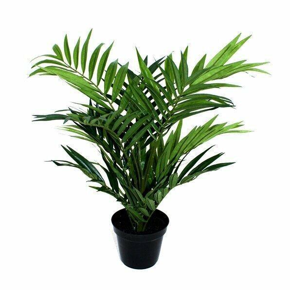 Umělá palma Chamédorea úhledná 50 cm