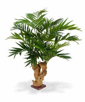 Umělá palma Chamédorea úhledná 65 cm