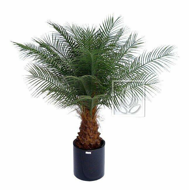 Umělá palma datlová 170 cm