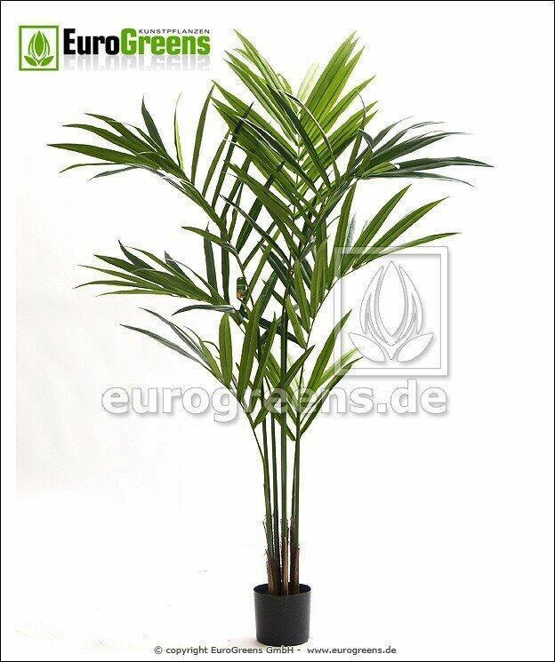 Umělá palma Kentia 170 cm