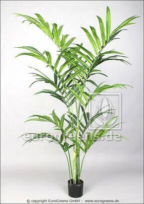 Umělá palma Kentia 180 cm
