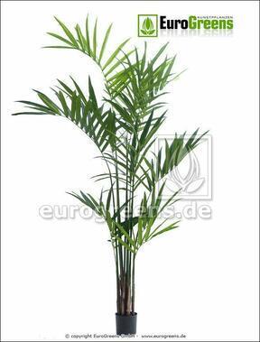 Umělá palma Kentia 240 cm