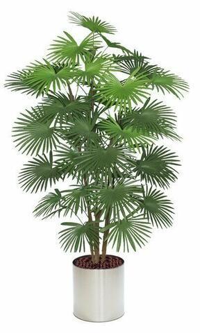 Umělá palma Livistona 175 cm