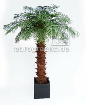 Umělá palma olejová 240 cm