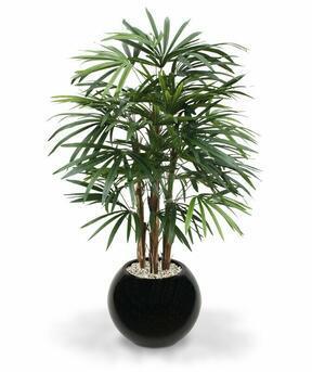 Umělá palma Rapis 100 cm