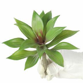 Umělá rostlina Agáve 16 cm