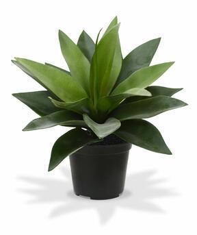 Umělá rostlina Agáve 25 cm