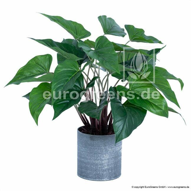 Umělá rostlina Anthurium 45 cm
