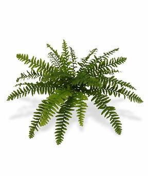 Umělá rostlina Bostonská kapradina 40 cm