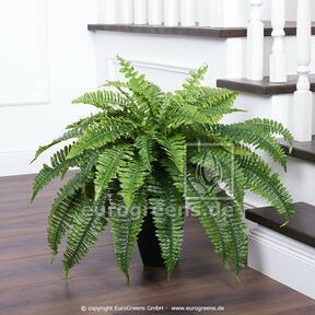 Umělá rostlina Bostonská kapradina 90 cm
