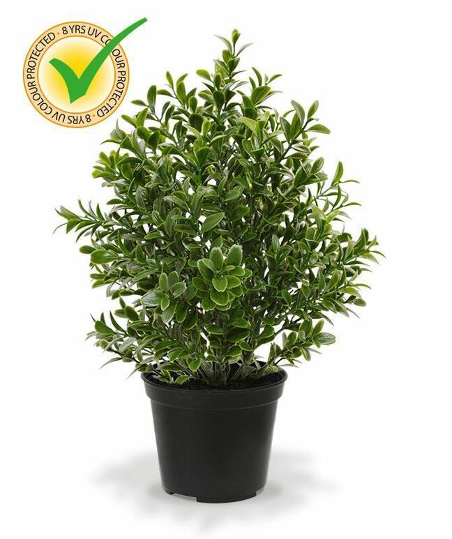 Umělá rostlina Buxus 30 cm