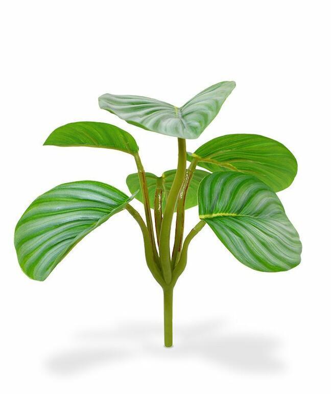 Umělá rostlina Calathea orbifolia 20 cm