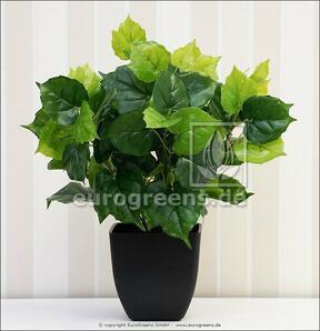 Umělá rostlina Cisus 40 cm