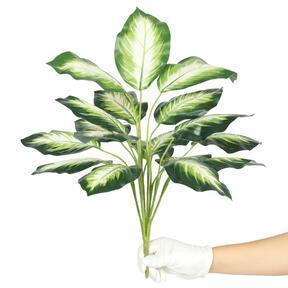 Umělá rostlina difenbachie bílá 50 cm
