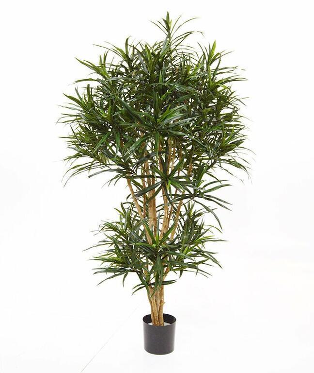 Umělá rostlina Dracena Reflex 160 cm