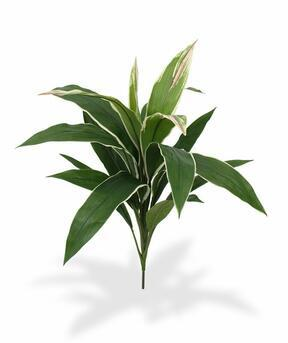 Umělá rostlina Dracena voňavá 60 cm