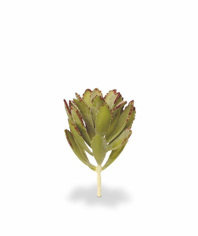 Umělá rostlina Eševéria 15 cm
