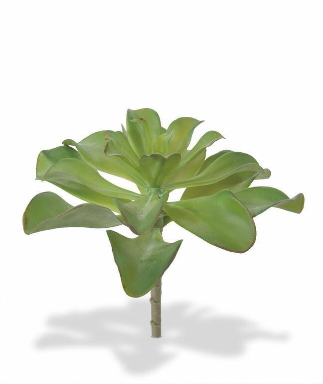 Umělá rostlina Eševéria 20 cm
