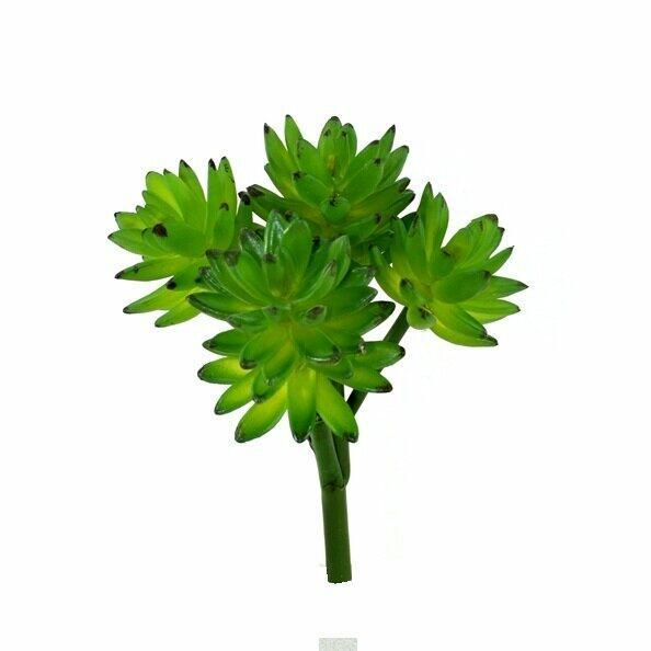 Umělá rostlina Eševéria 25 cm