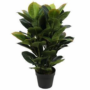 Umělá rostlina Fíkovník 75 cm
