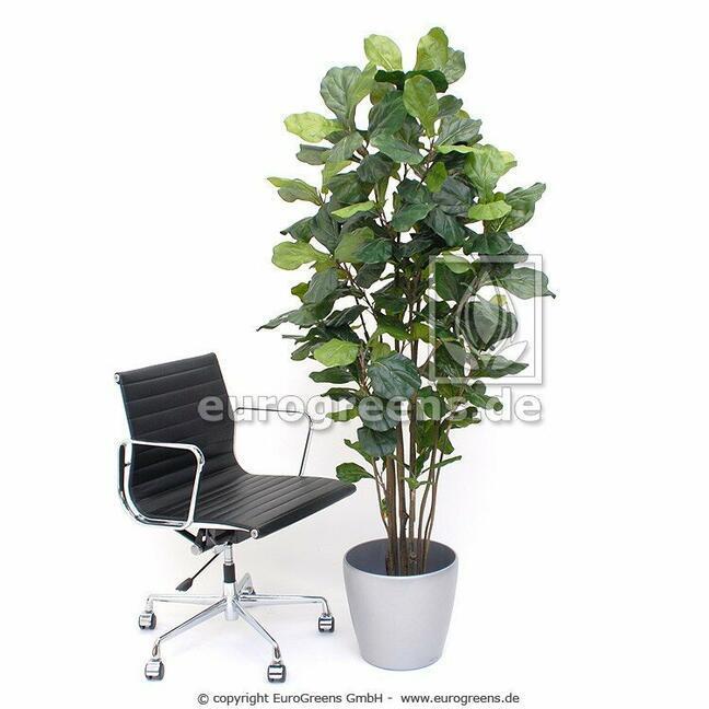 Umělá rostlina Fíkovník lýrovitolistý 180 cm