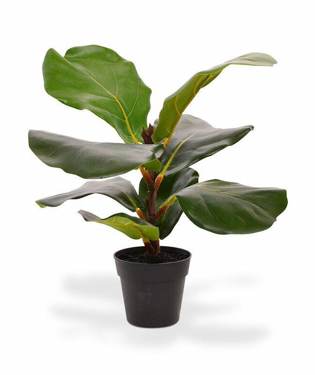 Umělá rostlina Fíkovník lýrovitolistý 30 cm