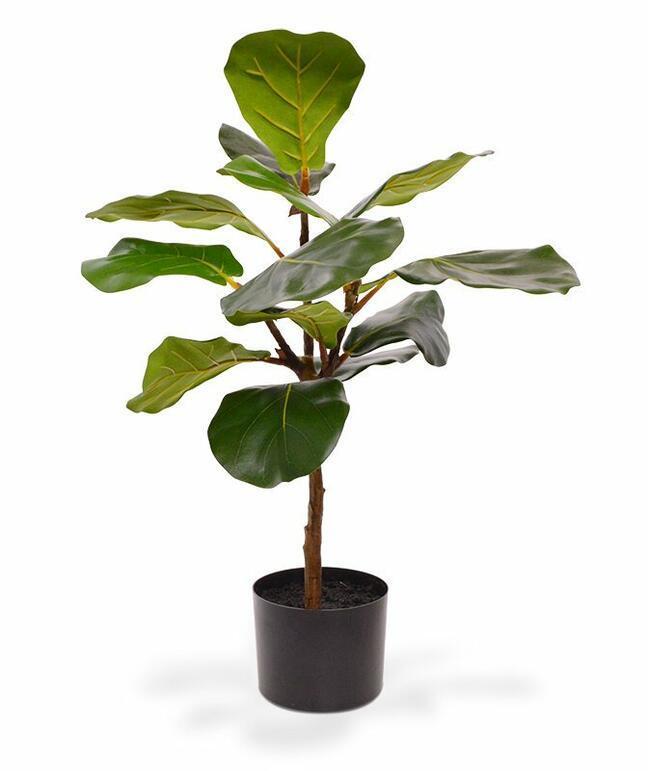 Umělá rostlina Fíkovník lýrovitolistý 60 cm