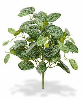 Umělá rostlina Fitónie 40 cm