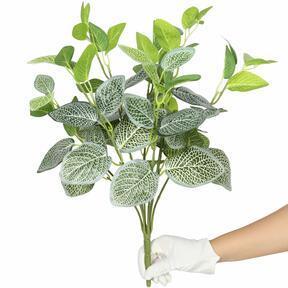 Umělá rostlina fitónie bílá 45 cm