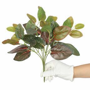 Umělá rostlina fitónie červená 25 cm