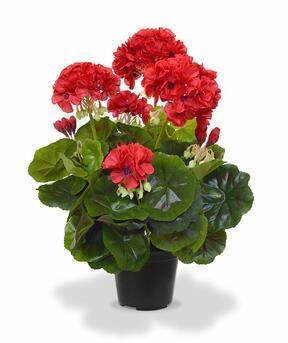 Umělá rostlina Kakost červená 40 cm