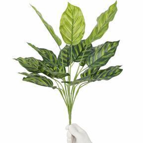 Umělá rostlina Kalatea 50 cm