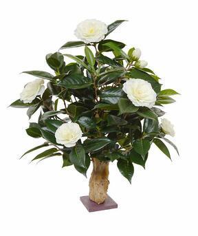 Umělá rostlina Kamélie krémová 65 cm