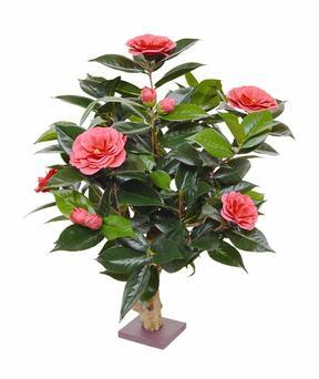 Umelá rostlina Kamélie růžová 65 cm