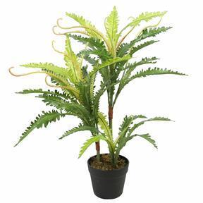 Umělá rostlina Kapradí 70 cm