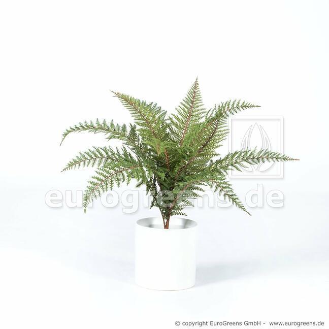 Umělá rostlina Kapradina 60 cm