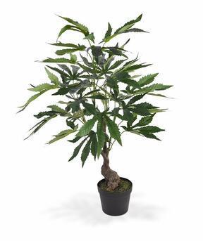 Umělá rostlina Konopí 60 cm